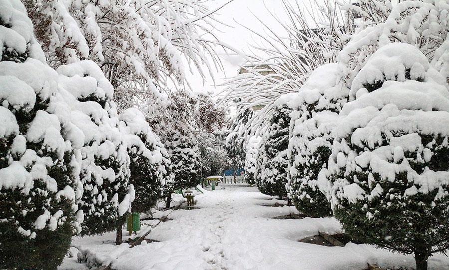 پیش بینی برف و باران برای تهران و نیمه غربی در دو روز آینده