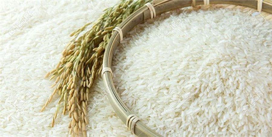 قیمت برنج دو برابر شد !