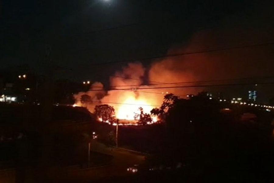آتشسوزی بزرگ در فضای سبز زیر پل مدیریت تهران + فیلم