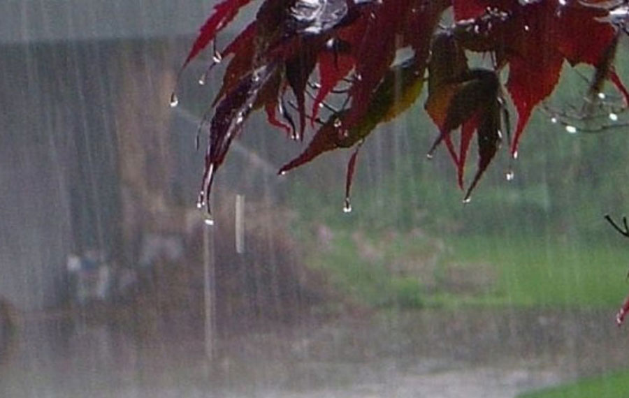 بارندگی در بلوچستان ۳ کشته در پی داشت