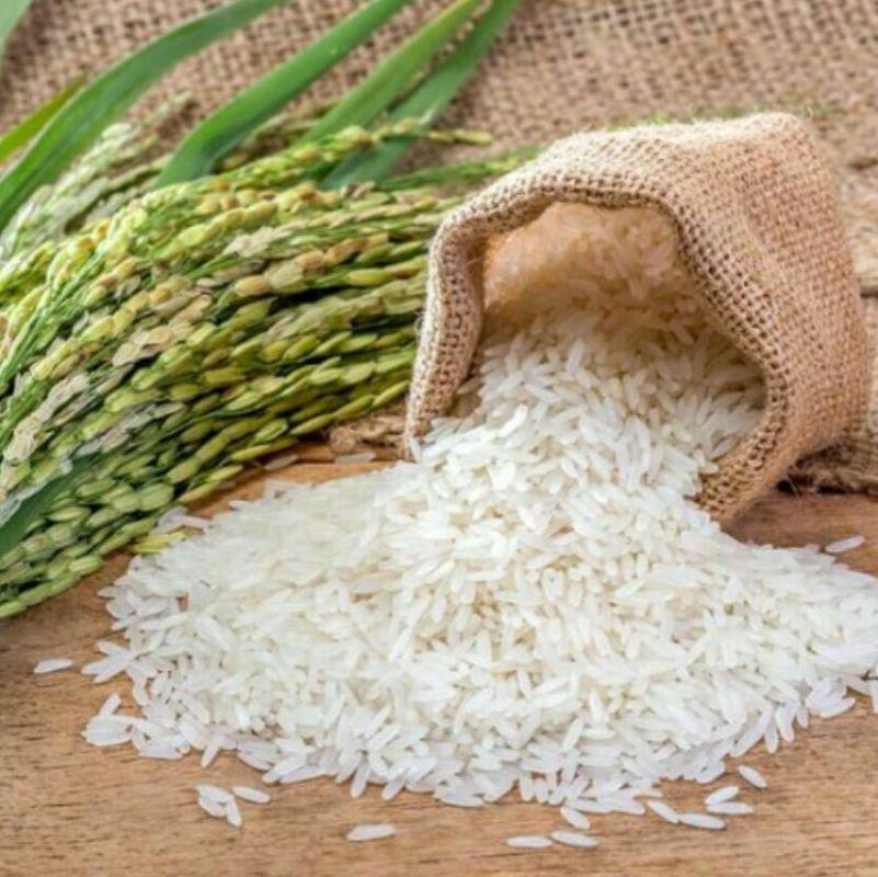 افزایش سم آرسنیک در خون با مصرف زیاد برنج