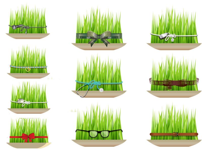 بهترین زمان برای کاشت سبزه