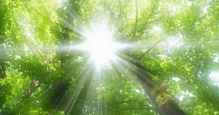 نور خورشید   مهم ترین و بهترین فواید نور خورشید برای بدن