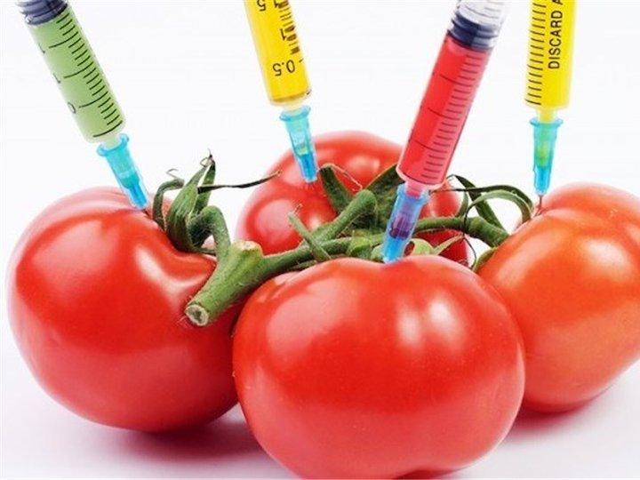 چگونگی تشخیص محصولات تراریخته از ارگانیک از زبان دکتر عمرانی