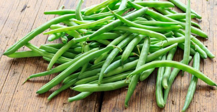خواص لوبیا سبز پخته فواید درمانی لوبیا سبز