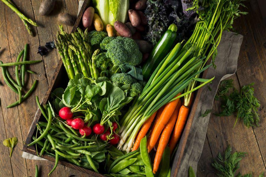 شستشوی صحیح میوه و سبزیجات