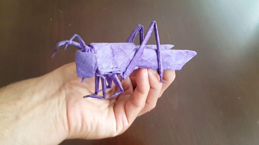 حشرات کاغذی ( آخر حرفه ای گری در اوریگامی )