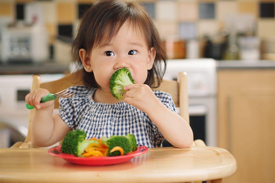 سن مناسب برای شروع غذای تکمیلی و جامد