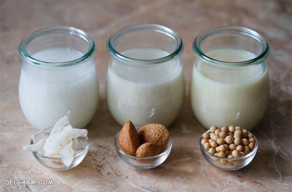 شیر های گیاهی : طرز تهیه ۷ مدل شیر گیاهی و خواص آنها