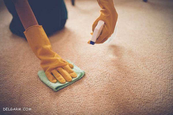 ۱۲ محلول قوی خانگی برای تمیز کردن آسان لکه فرش و موکت