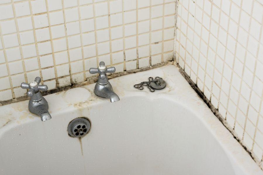 با کپک حمام خداحافظی کنید!
