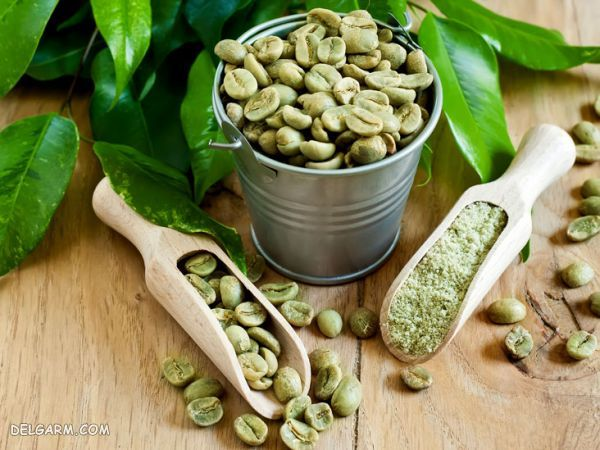 آموزش روش دم کردن قهوه سبز + خواص قهوه سبز برای سلامتی