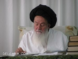 سید محمد حسینی شاهرودی