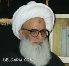 بشیر حسین نجفی.