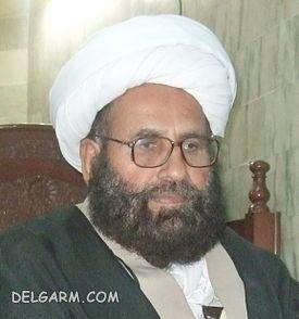 محمد حسین نجفی.jpg