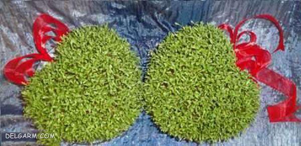 مدل قلبی سبزه سال 98
