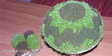 سبزه فوری دو رنگ