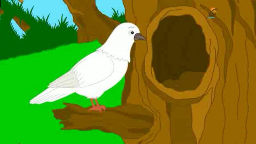 حکایت کوتاه و پندآمیز دو کبوتر برای نوروز از کلیله و دمنه