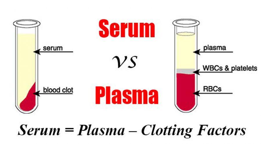 آیا می دانید سرم و پلاسما با هم چه تفاوتی دارند ؟