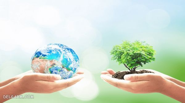 روز جهانی زمین پاک/ در روز جهانی زمین پاک این کارها را انجام دهید.