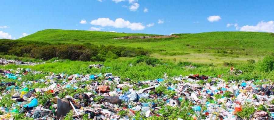 چه زبالههایی را هرگز نباید در طبیعت رها کنیم ؟