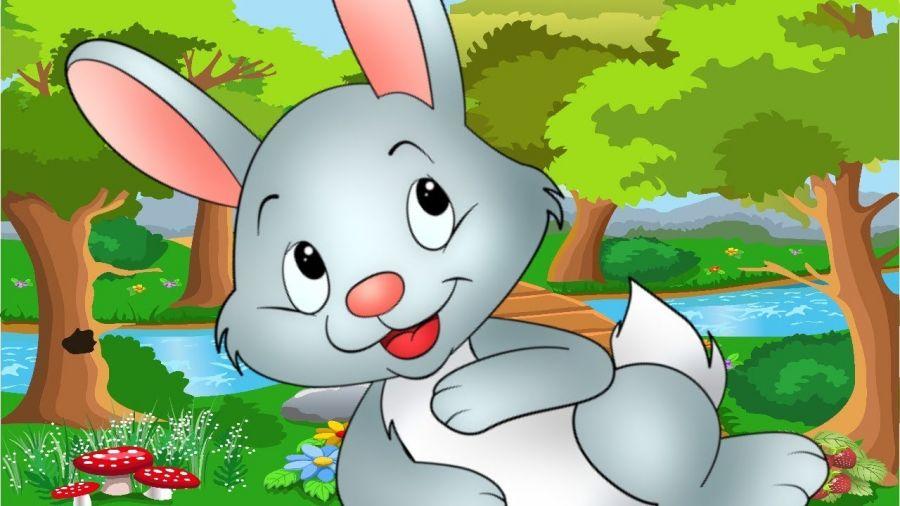 یه روز یه آقا خرگوشه | متن شعر کودکانه ی یه روز یه آقا خرگوشه