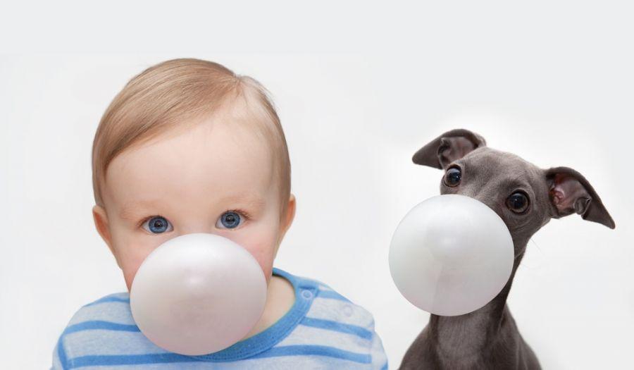 عوارض خطرناک قورت دادن آدامس در کودکان