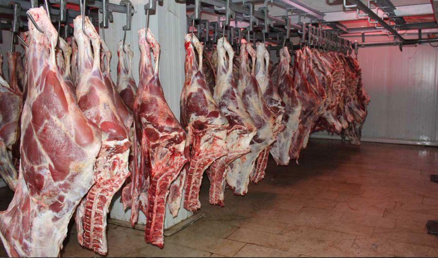 ۵۰۰ کیلو مرغ و گوشت فاسد در قرچک تهران کشف شد
