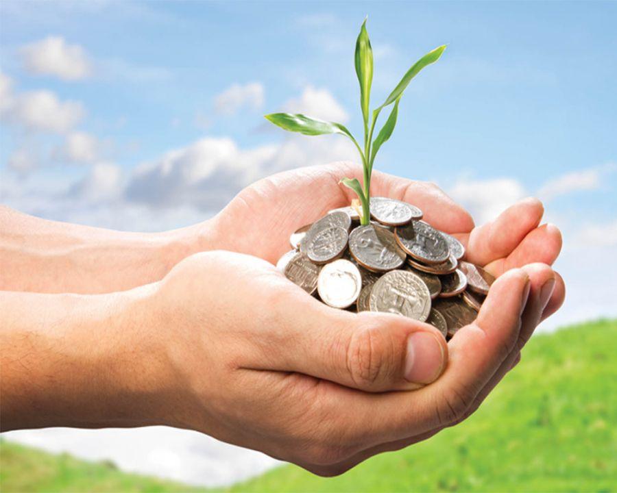 مالیات سبز چیست و  با چه هدفی اخذ میشود ؟