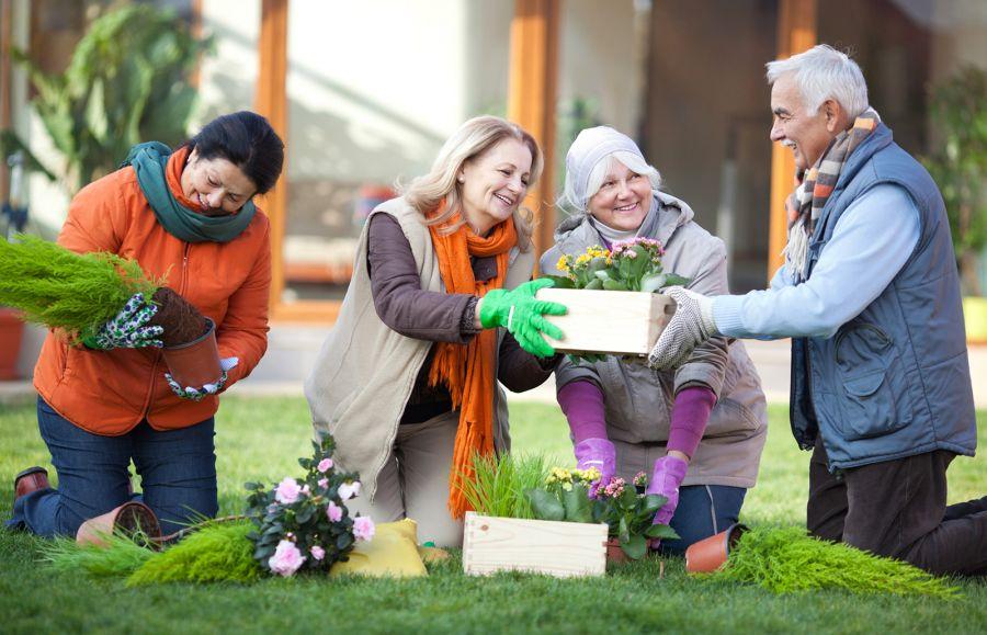 فعالیت های فیزیکی و ذهنی سرگرم کننده برای سالمندان