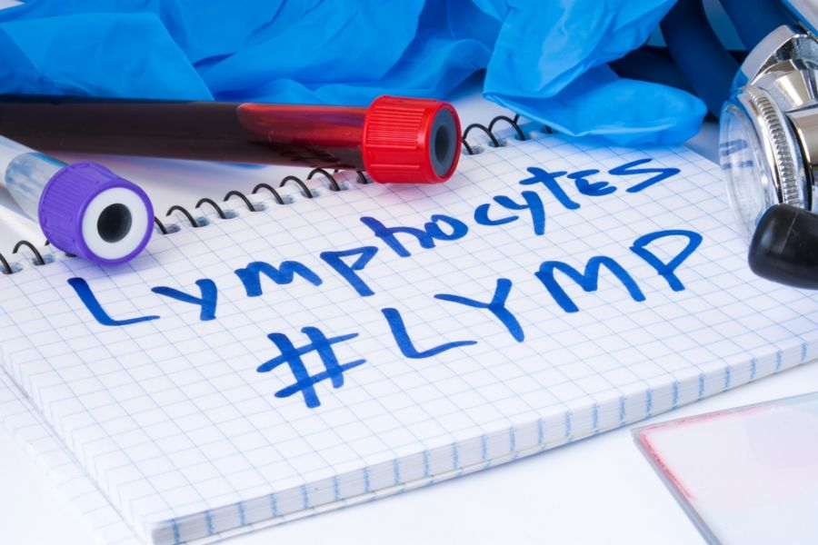 lymphocytes (lymph) در آزمایش خون و سطح نرمال آن