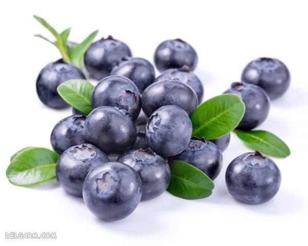 بلوبری-موادغذایی مناسب برای رشد مو