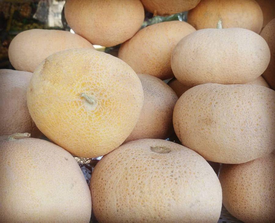 خواص گرمک : ۵ خاصیت شگفت انگیز میوه گرمک