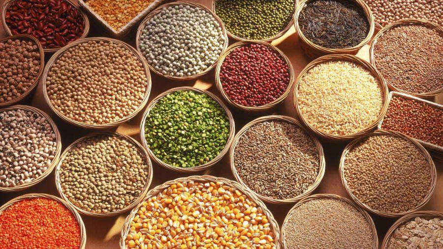 تفاوت بذر و دانه چیست ؟