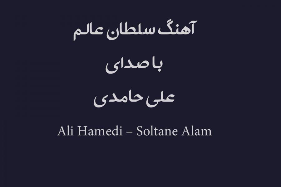 دانلود آهنگ علی حامدی بنام سلطان عالم برای اربعین