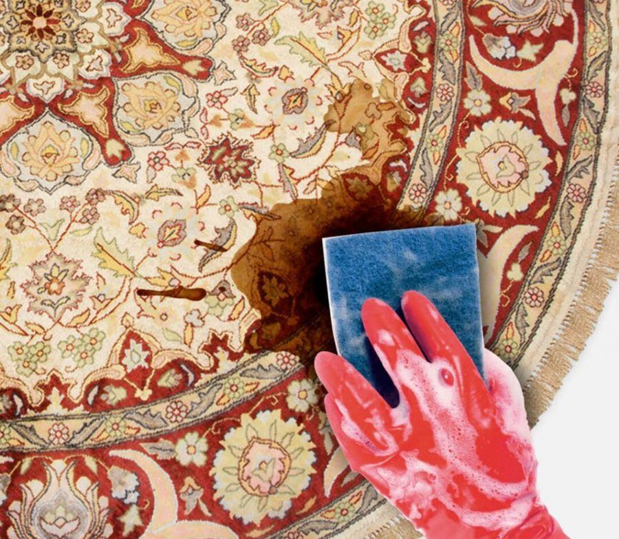 معرفی ۱۰ شامپو فرش با قدرت پاک کنندگی بالا