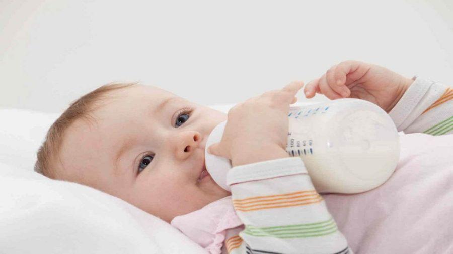 دانستنی های طلایی درمورد شیر خشک نان و انواع آن