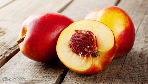 شلیل/کالری شلیل/ارزش غذایی شلیل/کالری میوه/ارزش غذایی میوه/خواص شلیل/خواص میوه/فواید شلیل/فواید میوه