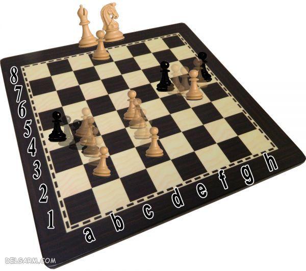 سرباز پیاده شطرنج