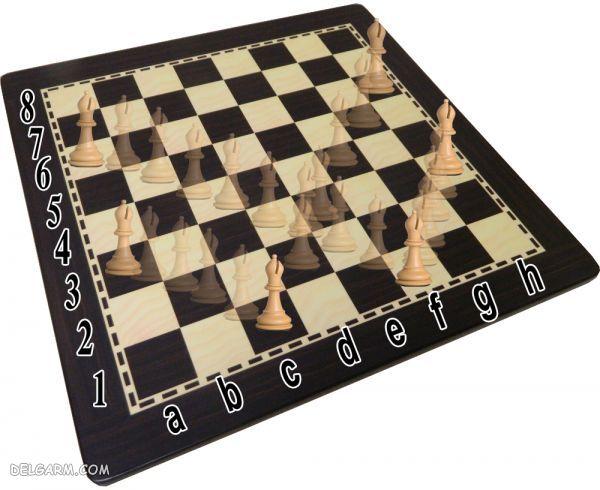 حرکت فیل در شطرنج