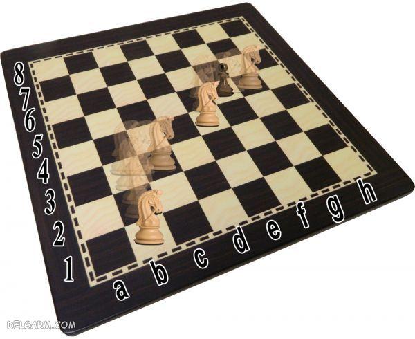 حرکت اسب در بازی شطرنج