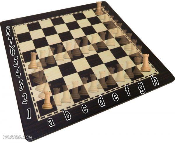 حرکت رخ در شطرنج