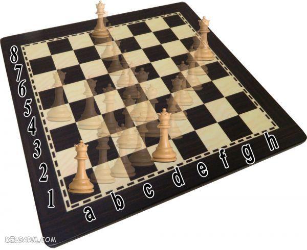 حرکت وزیر در شطرنج