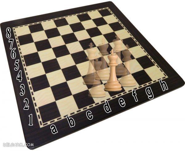 حرکت شاه در شطرنج