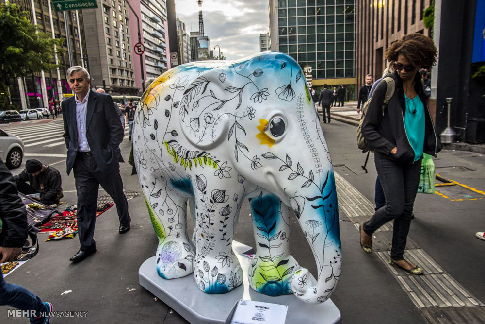 تصاویر نمایشگاه مجسمه های فیلی در برزیل