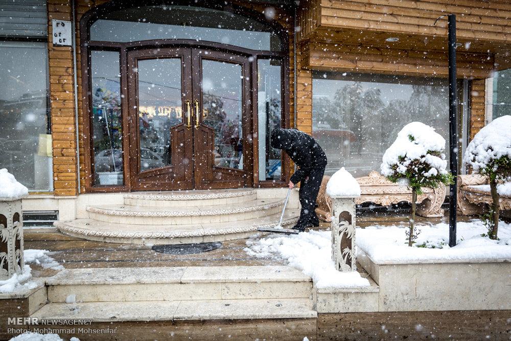 بارش برف بهاری در کرج - ۱