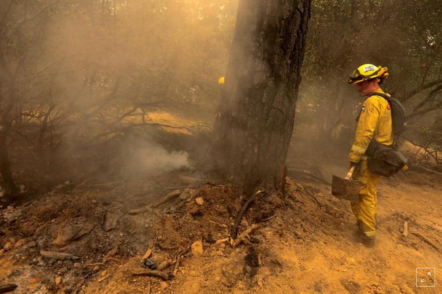 آتش سوزی کالیفرنیا 6 کشته و 7 مفقود برجا گذاشت