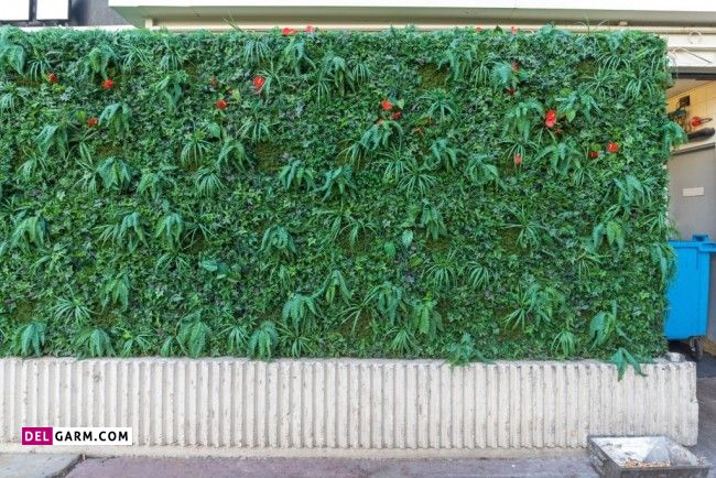 What is green wall