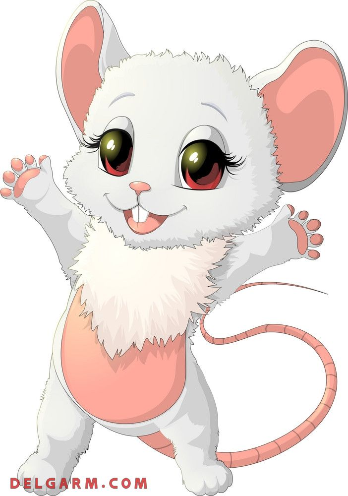 عکس خانم موش لدی موش سال موش