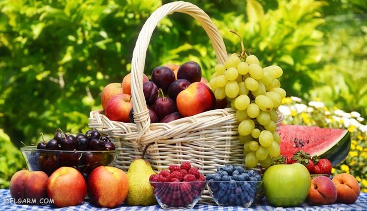 فریز کردن مواد غذایی  / کدام مواد غذایی را فریز نکنیم
